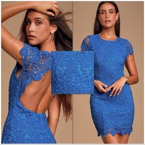 NWT Royal Blue Lace Backless Bodycon Dress